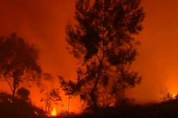 Incendie du Maîdo 2013