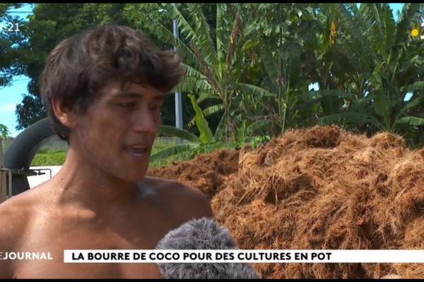 Une deuxième vie pour la bourre de coco