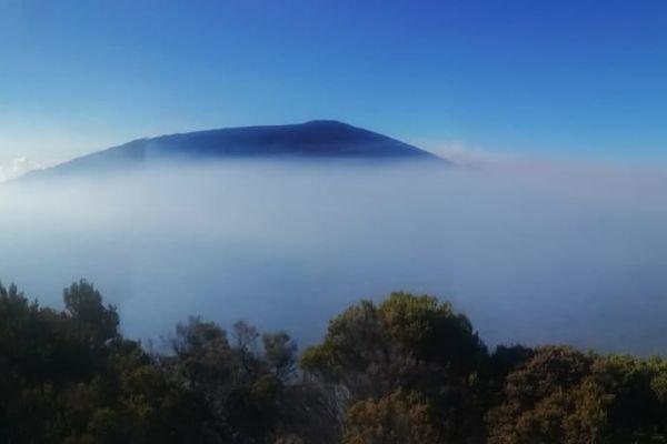 Panache de gaz au volcan du Piton de la Fournaise