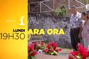 Te onohi / Le suicide - Ara Ora  - Lun 19 mai à 19h45