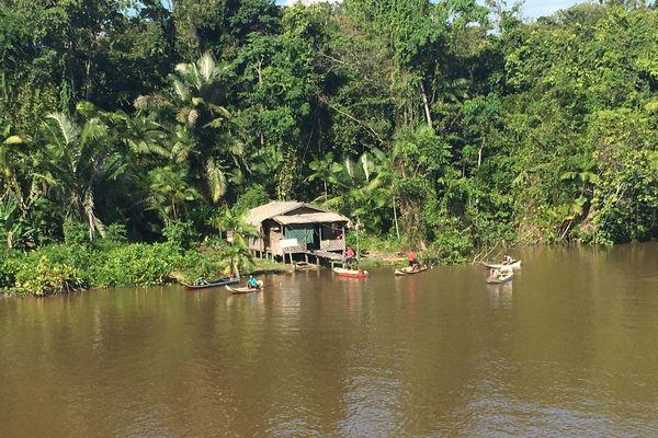Sur le fleuve Amazone en Amapa