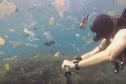 Bali : il nage au milieu d'un océan de déchets