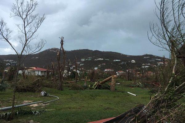 Saint-Barth Irma 13