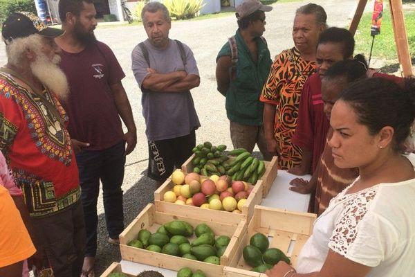 classification fruits et légumes canala