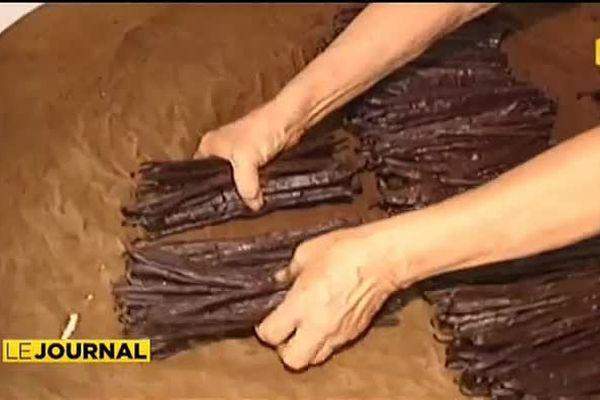 La vanille fleuron de l'agriculture tahitienne