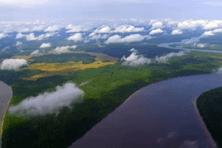 Vue aérienne de la forêt guyanaise