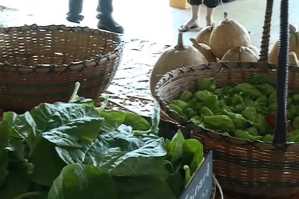 Vente de légumes produits au lycée de Matiti