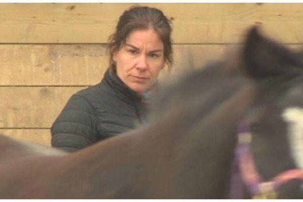 Son dada : remettre les chevaux sur pied