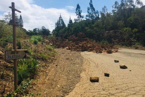 L'accès à la mine du Plateau, notamment bloquée par des branchages, 6 février 2020