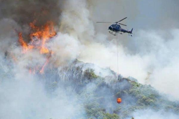 Nouvelle-Zélande : feu de forêt dans Pigeon Valley