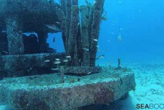 récifs artificiels pour mission naturelle