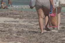 Touristes sur une plage de Sainte-Anne (Martinique).