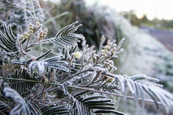 Les températures baissent, l'hiver austral s'installe à La Réunion.
