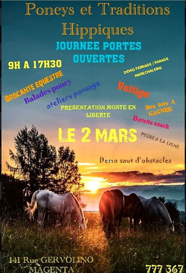Affiche Tous à cheval PTH
