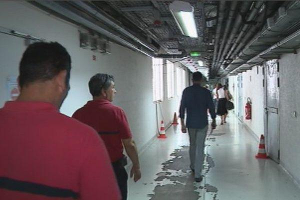 Black-out à l'hopital du Taaone : des margouillats seraient à l'origine de la panne électrique