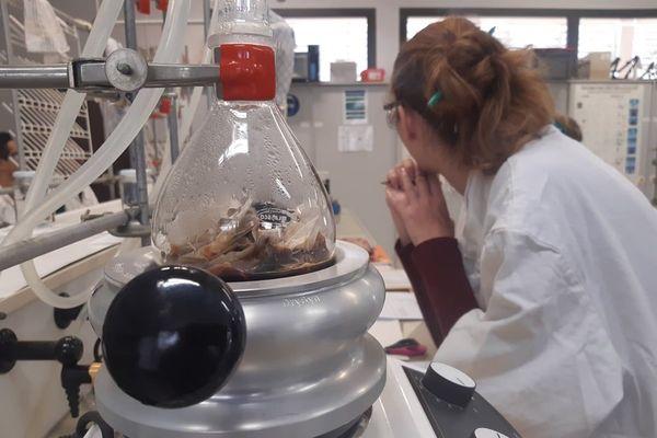Les Olympiades de la chimie fête ses 10 ans
