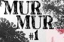 Cayenne : Festival MurMur ou comment transformer la photographie en art de la rue