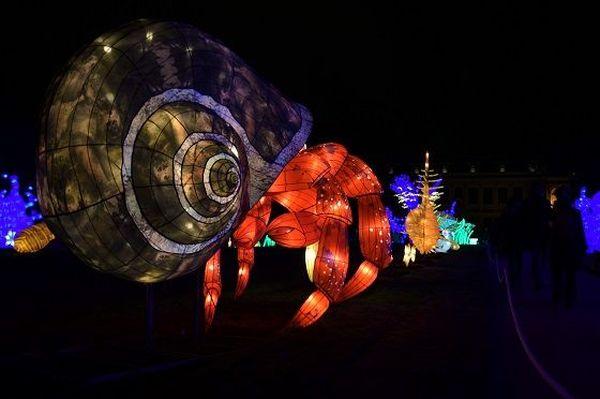 Expo « Océan d'Illumination » Jardin des Plantes