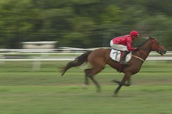 courses chevaux / hippiques