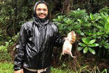 La chasse au tangue est ouverte