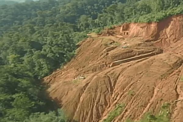 Déforestation du plateau des Guyanes