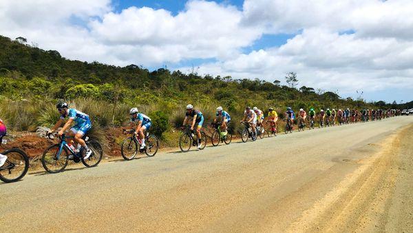 Tour cycliste 2019, peloton en file dans le Grand Sud