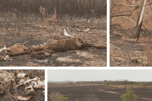 Incendie : propriété Karenga dévastée