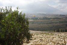 Jérusalem et le dôme de la mosquée Al-Aqsa, depuis le Mont des Oliviers. C'est du lieu où est construite la mosquée que le prophète Muhammad se serait envolé vers les cieux selon la tradition musulmane.