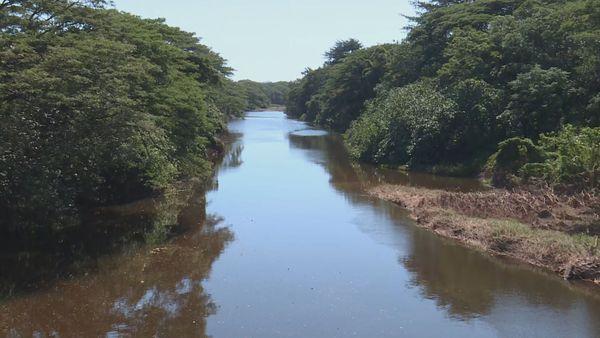 Koné rivière