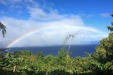 Les arcs-en-ciel se multiplient. Mercredi 16 juin 2021, au niveau de la Pointe-au-Sel à Saint-Leu, la pluie et le soleil ont offert cette splendide décomposition des sept couleurs primaires qui composent la lumière.