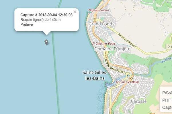 La prise de requins est indiquée sur la carte du site internet www.info-requin.re.
