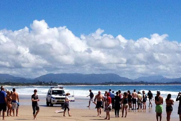 requin byron bay