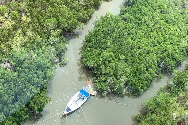 Préparation cyclone Niran