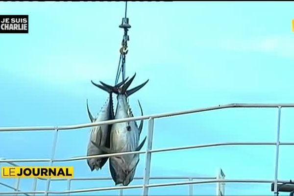 Prime à l'export : les pêcheurs à bon port