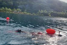 Chaque jour, plusieurs heures dans l'eau à nager.
