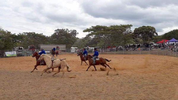 Fête de l'élevage à l'ancienne, La Foa, rodéo, août 2019