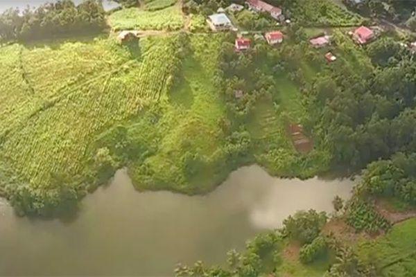 Territoire Martinique