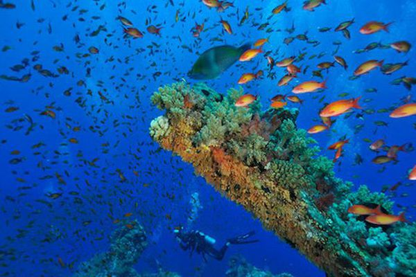 L'eau de mer pour la clim
