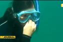 Calédonie : mordu par un requin à quelques mètres du rivage