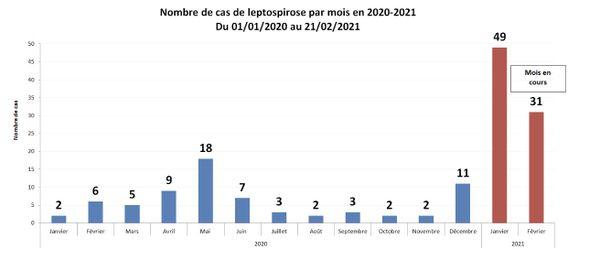 Nombre de cas de leptospirose au 21 février