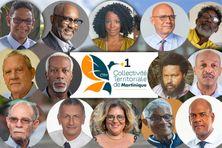 Les 14 candidats à l'élection de la Collectivité Territoriale de Martinique.