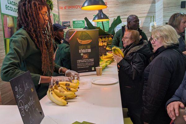 Des visiteurs attendant de goûter la banane Pointe d'Or