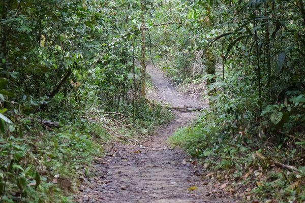 Le chemin du bagne des Annamites à Tonnégrande