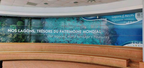 Promotion du classement du lagon à l'aquarium de Nouméa, juillet 2020