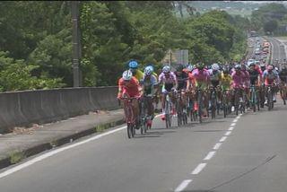 Cyclisme : peloton