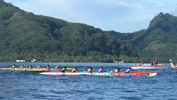 Les hawaïennes