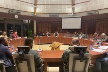Le sujet a été développé au Sénat coutumier, lors d'une conférence au soir du mardi 20 juillet.