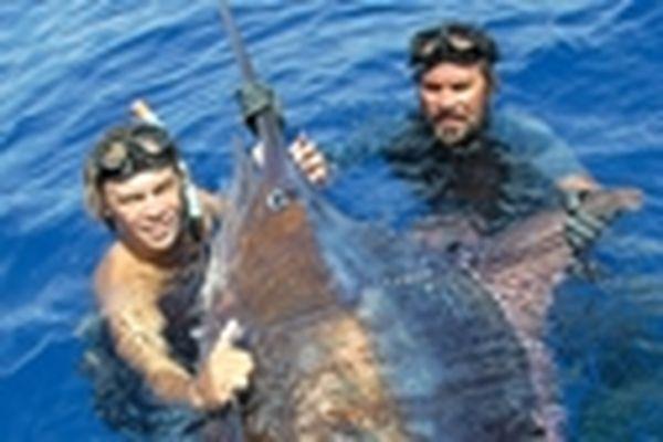 G et le Marlin