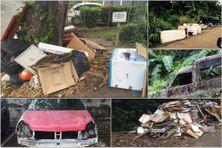 Des décharges sauvages se multiplient en Martinique