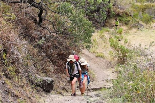 Des sentiers de randonnées sont actuellement fermés à La Réunion.